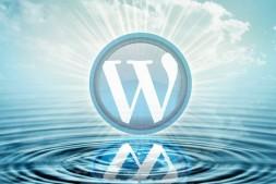 WordPress4.5升级之白屏问题的解决